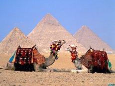 РФ и Египет усилят взаимодействие для обеспечения безопасности туристов на курортах Красного моря