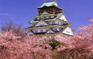 Япония выпустила онлайн-путеводитель для туристов из России