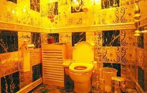 Самые необычные туалеты мира