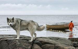 Россия: Полуостров Рыбачий стал природным парком