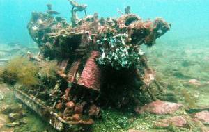В Крыму создадут парк искусственных рифов