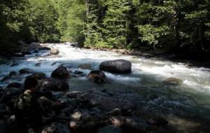 В Сочи открыли новый экскурсионный маршрут «По долине реки Ачипсе»