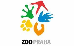 США: Лучший зоопарк мира находится в Сан-Диего
