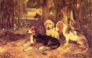 Берлинский музей приглашает собак на выставку