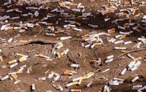 Италия: Пляж Маррано-Бич делает скидку для некурящих