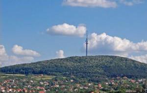 Сербия: Музей ракии открылся в Белграде