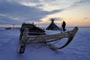 Туристам предлагают провести «Чумовые выходные в Арктике»