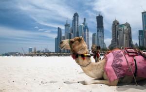 Туристический налог введён в эмирате Рас-эль-Хайма