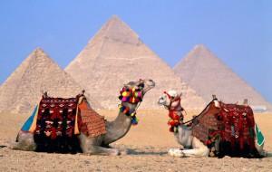 Россияне покупают путевки в Египет в Белоруссии