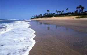 Гамбия заявляет о себе на российском рынке