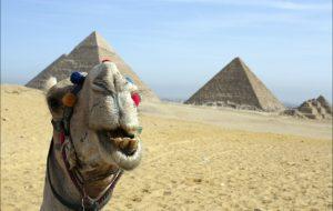 РФ и Египет подготовят соглашение по безопасности полётов