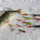 Советы начинающим рыбакам на зимней рыбалке