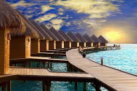 Все виды мальдивской сказки