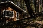 В Ленинградской области открылся отель «все включено»