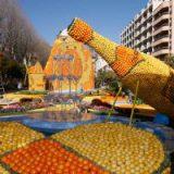 На Мадейре собирают лимоны и готовятся к празднику