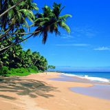 Ростуризм о ливнях на Шри-Ланке