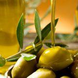 В Хорватии открылся первый музей оливкового масла