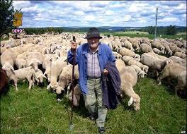 В Грузии туристам предлагают стать пастухами