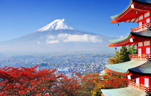 Роспотребнадзор предупредил о кишечной инфекции в Японии