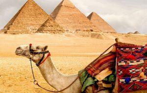 Египет выполнил все требования РФ