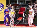 Туристический инфоцентр в Осаке открыл кафе с гейшами