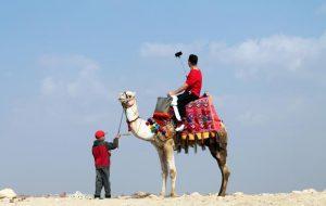 Прямые рейсы в Каир из Москвы уже есть в поиске
