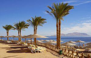 Когда запустят прямые рейсы на курорты Египта?