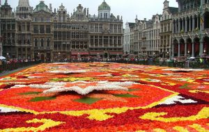 В Брюсселе развернут цветочный ковер