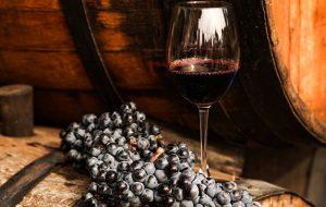 На Кубани откроют 80 маршрутов винного и агротуризма
