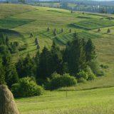 Летнее путешествие, отпуск в Украине в горах Карпат