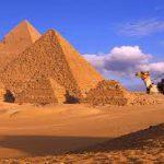 Вопреки ожиданиям Египет оказался в числе аутсайдеров по популярности в Гугле