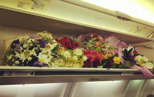 Путешественники не смогут ввезти в Россию больше 3 букетов цветов