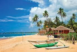 В Посольстве Шри-Ланки прокомментировали ситуацию с бесплатными визами