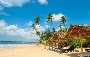 Шри-Ланка продлила действие бесплатных виз для россиян