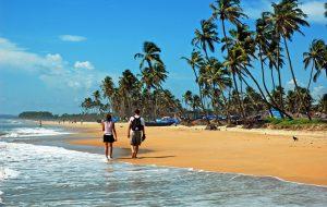 В Гоа туристам разрешат распивать спиртное в специальных местах