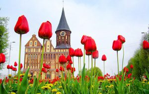Куда отправить туристов на майские праздники?