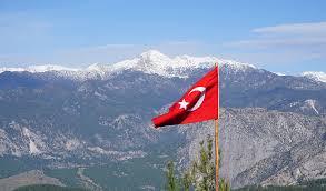 Турция начинает постепенный выход из карантина
