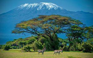 «Интурист» открыл продажи туров в Танзанию на чартерах из регионов