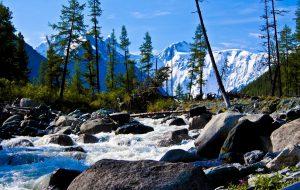 Лучший отдых в Алтайском крае