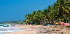 Шри-Ланка открывается для туристов и предъявляет новые требования