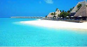 Любителей экзотики приглашают провести 6 месяцев на райском острове в Карибском море