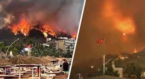 Актуальная информация о ситуации с лесными пожарами на курортах Турции